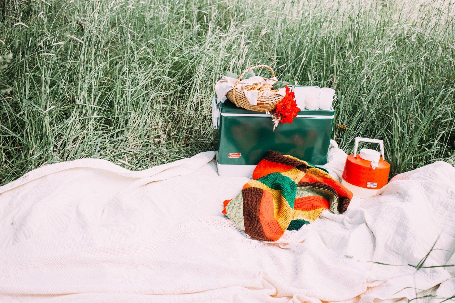 picnic-0004